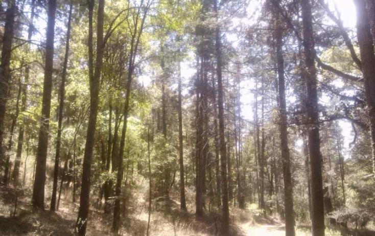 Foto de terreno habitacional en venta en, del viento, mineral del monte, hidalgo, 580456 no 61