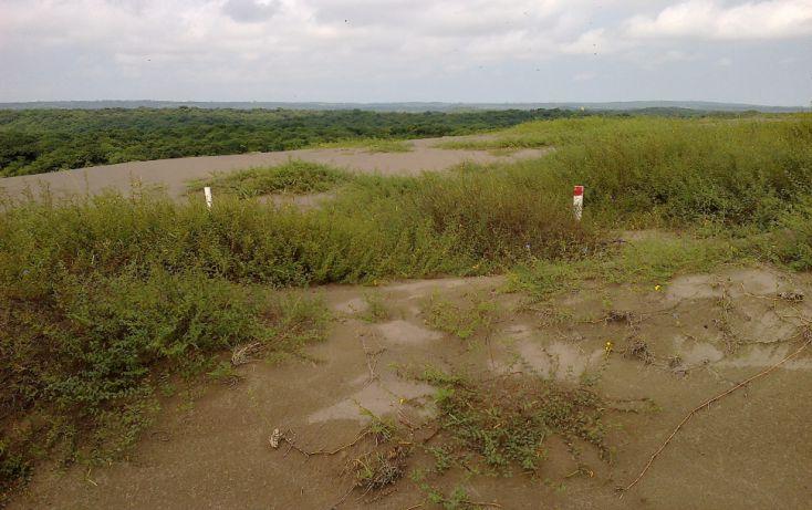 Foto de terreno comercial en venta en, delfino victoria santa fe, veracruz, veracruz, 2035834 no 03