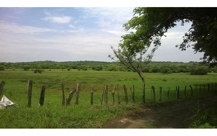 Foto de terreno habitacional en venta en  , delfino victoria (santa fe), veracruz, veracruz de ignacio de la llave, 1454761 No. 01
