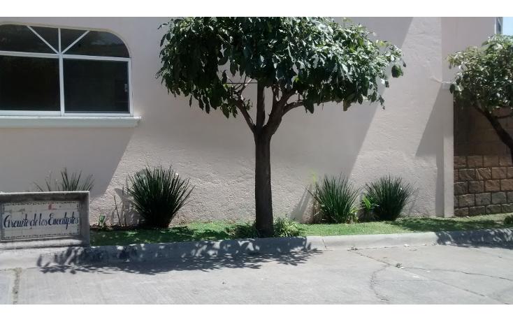 Foto de casa en renta en  , delicias, cuernavaca, morelos, 1119481 No. 07