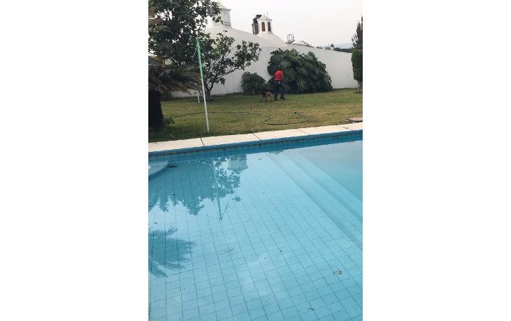 Foto de departamento en venta en  , delicias, cuernavaca, morelos, 1974669 No. 16