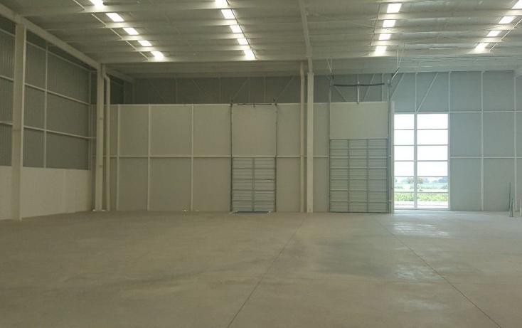 Foto de nave industrial en venta en  , deportiva, villagrán, guanajuato, 2035214 No. 07