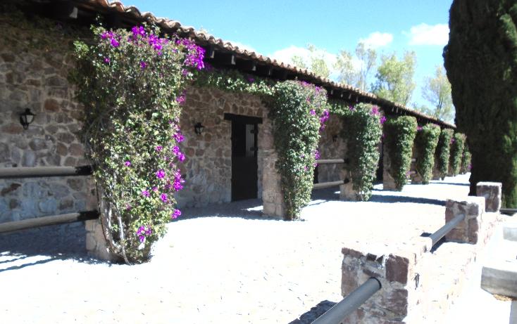 Foto de terreno habitacional en venta en  , desarrollo las ventanas, san miguel de allende, guanajuato, 1273981 No. 44