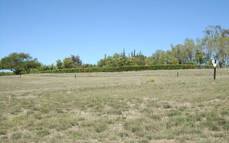 Foto de terreno habitacional en venta en  , desarrollo las ventanas, san miguel de allende, guanajuato, 938257 No. 05