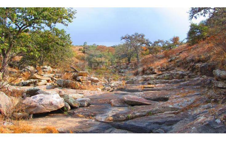 Foto de terreno comercial en venta en  , devego, nopala de villagrán, hidalgo, 1841696 No. 02