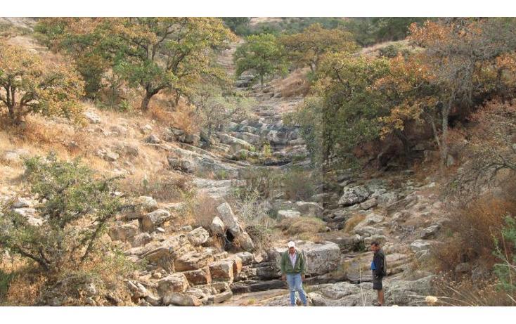 Foto de terreno comercial en venta en  , devego, nopala de villagrán, hidalgo, 1841696 No. 05