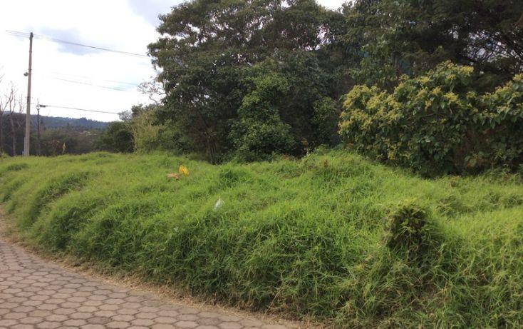 Foto de terreno habitacional en venta en, diamante, xalapa, veracruz, 1644233 no 01