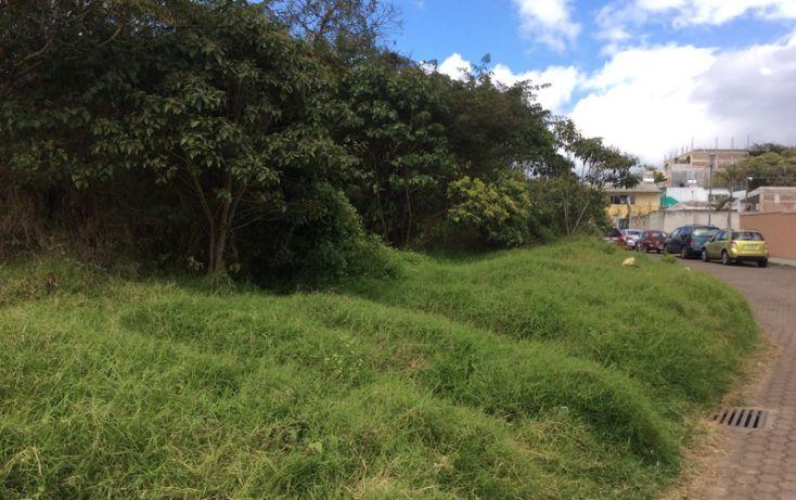 Foto de terreno habitacional en venta en, diamante, xalapa, veracruz, 1644233 no 02