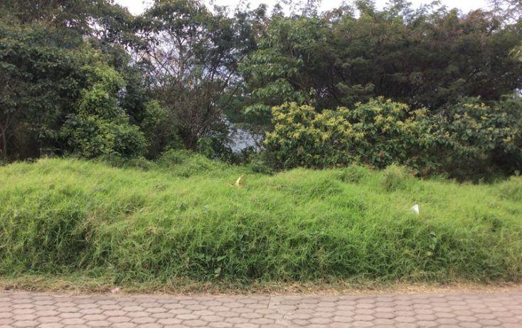 Foto de terreno habitacional en venta en, diamante, xalapa, veracruz, 1644233 no 03