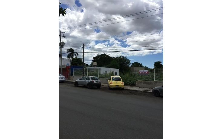 Foto de terreno comercial en renta en  , diaz ordaz, mérida, yucatán, 1098139 No. 02