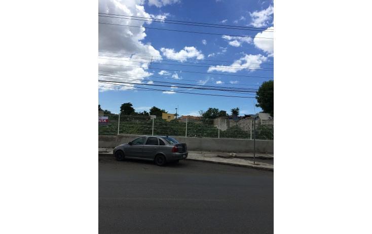 Foto de terreno comercial en renta en  , diaz ordaz, mérida, yucatán, 1098139 No. 03