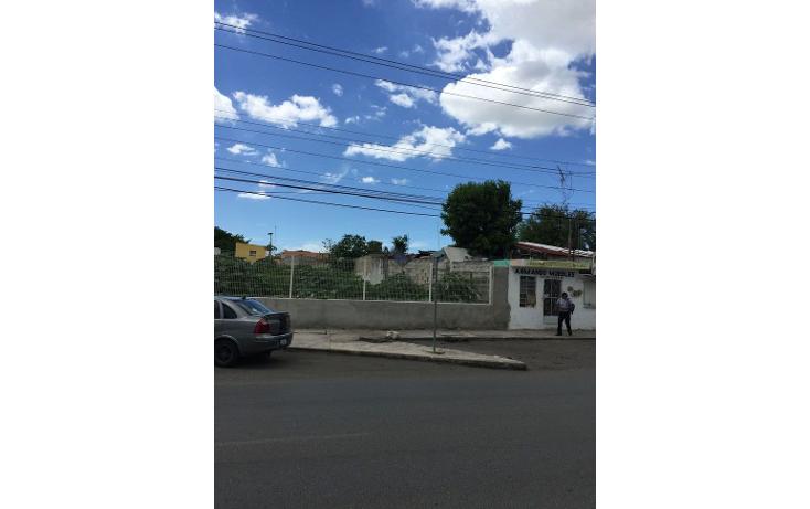 Foto de terreno comercial en renta en  , diaz ordaz, mérida, yucatán, 1098139 No. 05