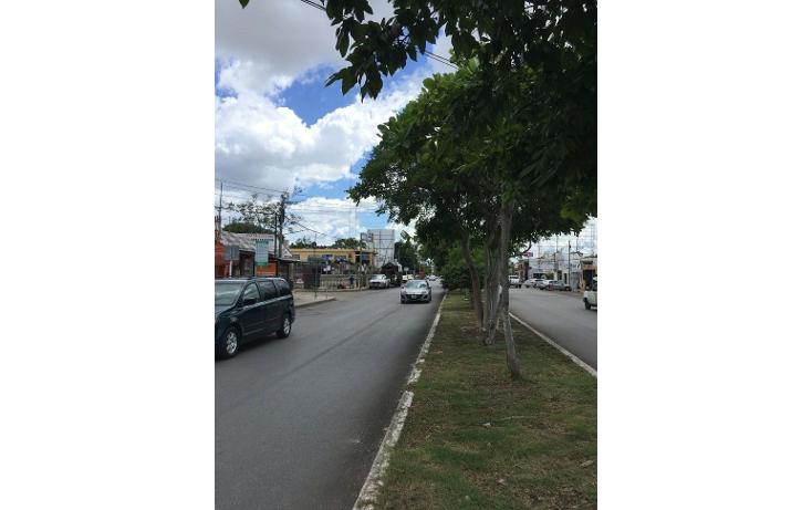 Foto de terreno comercial en renta en  , diaz ordaz, mérida, yucatán, 1098139 No. 06