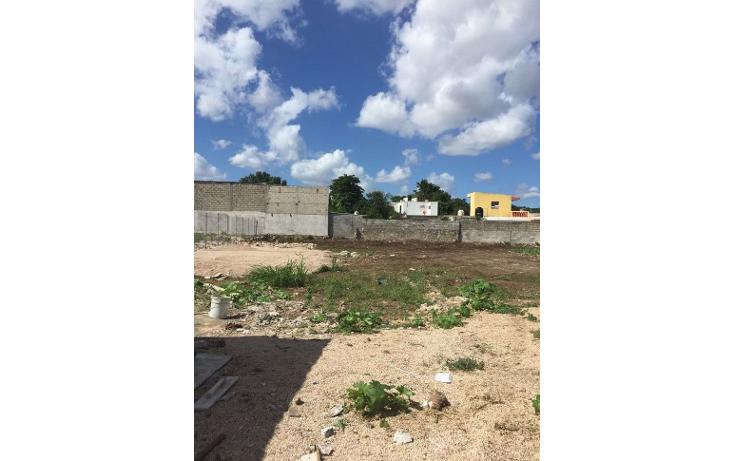 Foto de terreno comercial en renta en  , diaz ordaz, mérida, yucatán, 1098139 No. 10