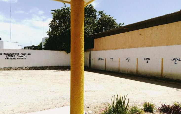 Foto de local en renta en  , diaz ordaz, mérida, yucatán, 2630845 No. 06