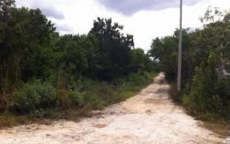 Foto de terreno habitacional en venta en doctores 01, cancún centro, benito juárez, quintana roo, 407690 no 01