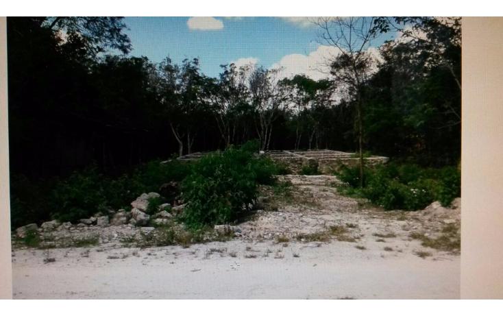 Foto de terreno habitacional en venta en  , doctores ii, benito juárez, quintana roo, 1120667 No. 01