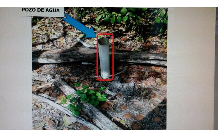 Foto de terreno habitacional en venta en  , doctores ii, benito juárez, quintana roo, 1120667 No. 02