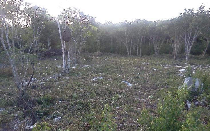 Foto de terreno habitacional en venta en  , doctores ii, benito juárez, quintana roo, 1126679 No. 01