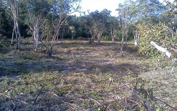 Foto de terreno habitacional en venta en  , doctores ii, benito juárez, quintana roo, 1126679 No. 02