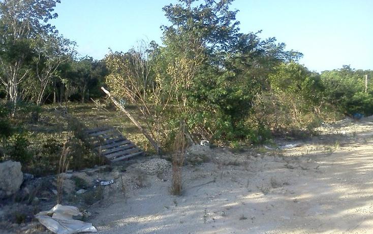 Foto de terreno habitacional en venta en  , doctores ii, benito juárez, quintana roo, 1126679 No. 04