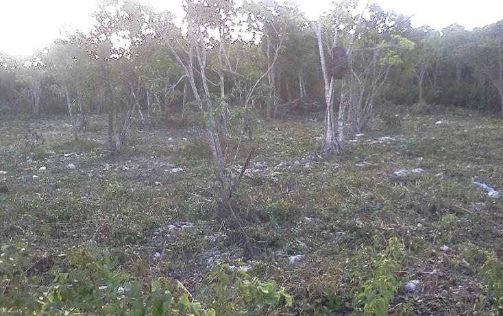 Foto de terreno habitacional en venta en  , doctores ii, benito juárez, quintana roo, 1126679 No. 06