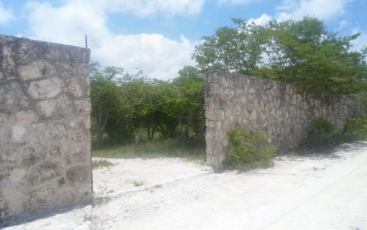 Foto de terreno habitacional en venta en  , doctores ii, benito juárez, quintana roo, 1290721 No. 02