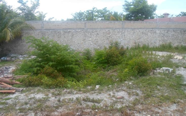 Foto de terreno habitacional en venta en  , doctores ii, benito juárez, quintana roo, 1290721 No. 06