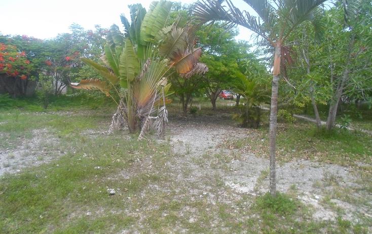 Foto de terreno habitacional en venta en  , doctores ii, benito juárez, quintana roo, 1290721 No. 08