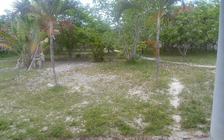 Foto de terreno habitacional en venta en  , doctores ii, benito juárez, quintana roo, 1290721 No. 09
