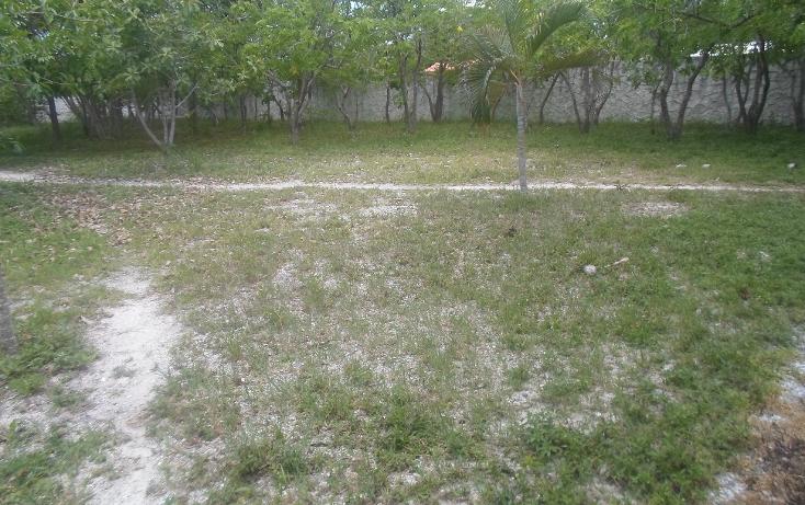 Foto de terreno habitacional en venta en  , doctores ii, benito juárez, quintana roo, 1290721 No. 10