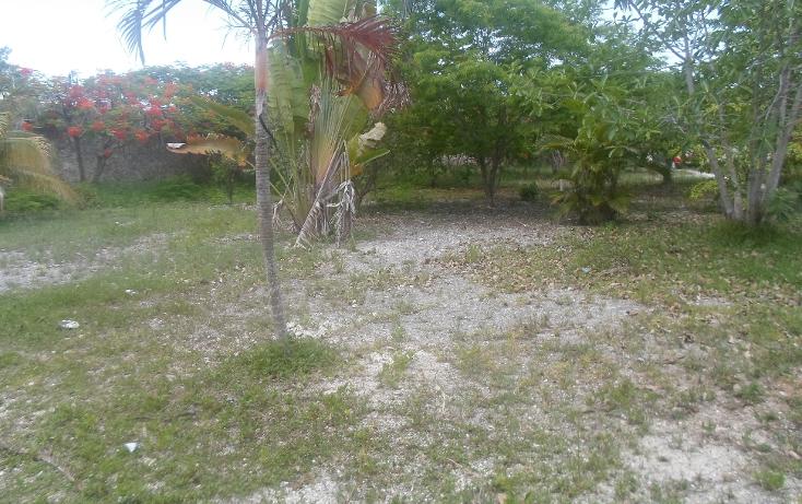 Foto de terreno habitacional en venta en  , doctores ii, benito juárez, quintana roo, 1290721 No. 11