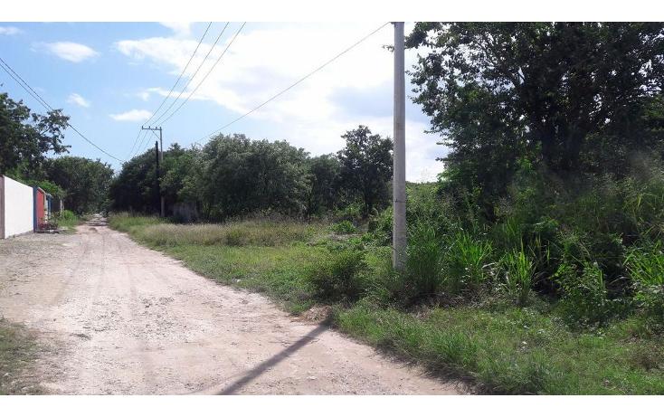 Foto de terreno habitacional en venta en  , doctores ii, benito juárez, quintana roo, 1375877 No. 01