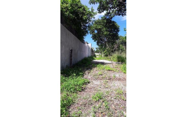 Foto de terreno habitacional en venta en  , doctores ii, benito juárez, quintana roo, 1375877 No. 02