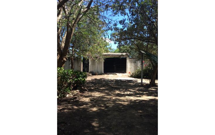 Foto de terreno habitacional en venta en  , doctores ii, benito juárez, quintana roo, 1661864 No. 01