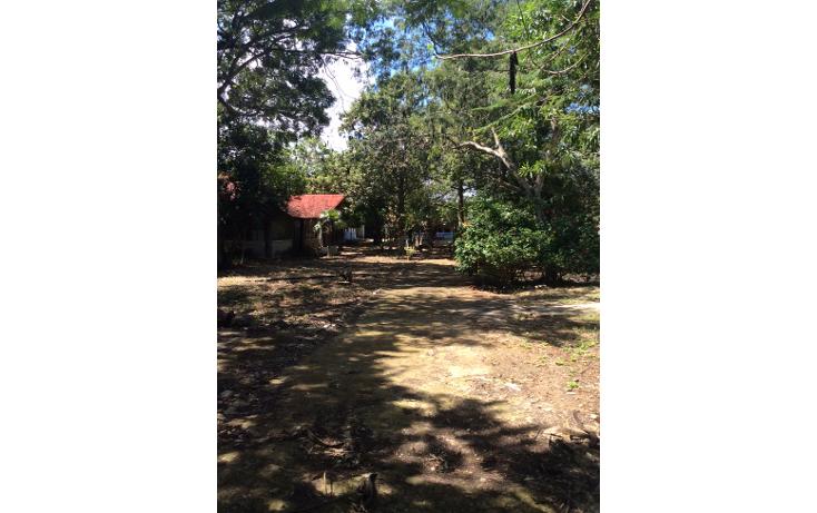 Foto de terreno habitacional en venta en  , doctores ii, benito juárez, quintana roo, 1661864 No. 02