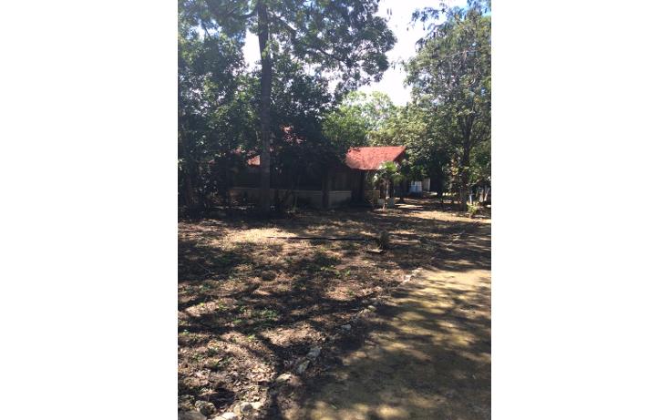 Foto de terreno habitacional en venta en  , doctores ii, benito juárez, quintana roo, 1661864 No. 04