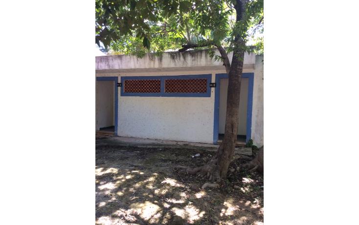 Foto de terreno habitacional en venta en  , doctores ii, benito juárez, quintana roo, 1661864 No. 06