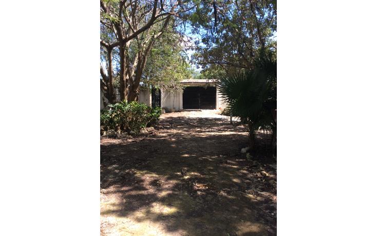 Foto de terreno habitacional en venta en  , doctores ii, benito juárez, quintana roo, 1661864 No. 08