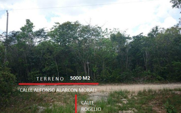 Foto de terreno habitacional en venta en, doctores ii, benito juárez, quintana roo, 1862258 no 01