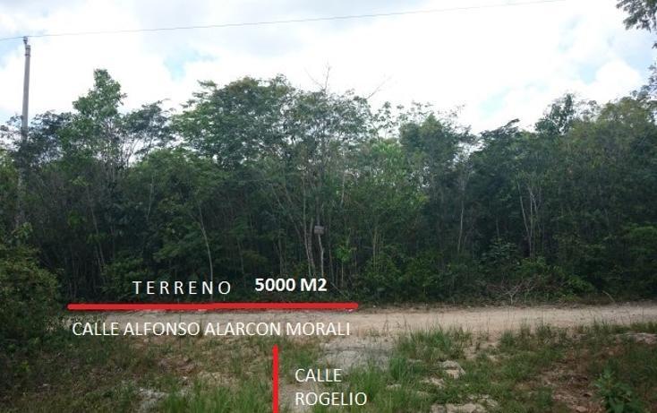 Foto de terreno habitacional en venta en  , doctores ii, benito juárez, quintana roo, 1862258 No. 01