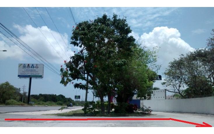 Foto de terreno habitacional en venta en  , doctores ii, benito juárez, quintana roo, 1862258 No. 02