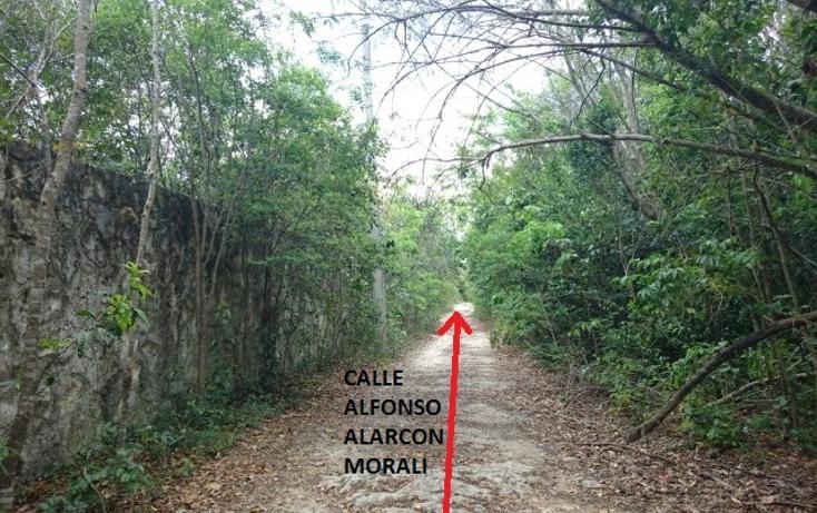 Foto de terreno habitacional en venta en  , doctores ii, benito juárez, quintana roo, 1862258 No. 30