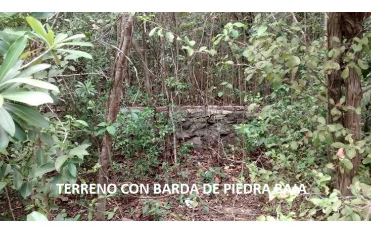 Foto de terreno habitacional en venta en, doctores ii, benito juárez, quintana roo, 1862258 no 31