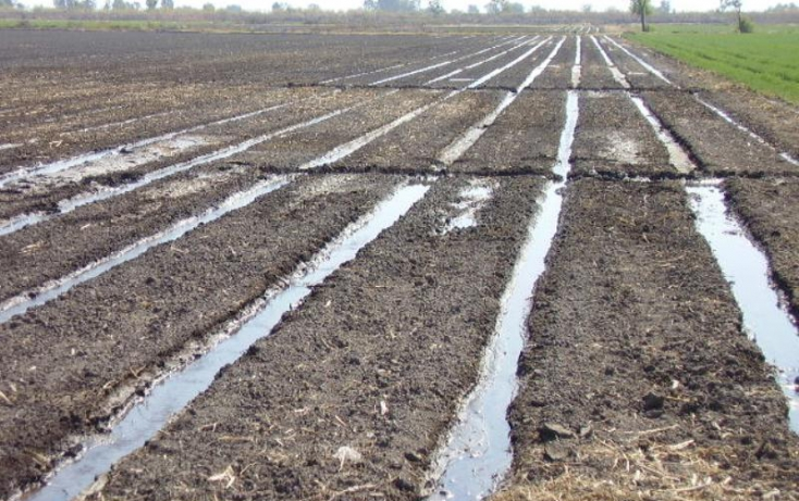 Foto de terreno comercial en venta en dom conocido, álvaro obregón, álvaro obregón, michoacán de ocampo, 385327 no 05