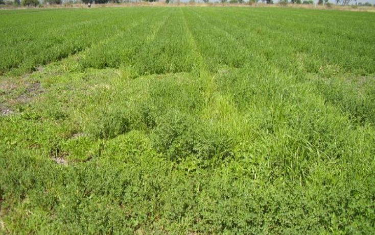Foto de terreno comercial en venta en dom conocido, álvaro obregón, álvaro obregón, michoacán de ocampo, 385327 no 08