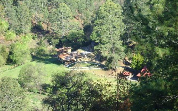 Foto de rancho en venta en dom conocido ferreria de tula 1, ferreria de tula, tapalpa, jalisco, 397763 no 06