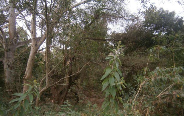 Foto de terreno habitacional en venta en domicilio conocido, 3 de mayo, xochitepec, morelos, 1020777 no 03