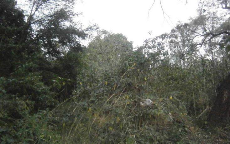 Foto de terreno habitacional en venta en domicilio conocido, 3 de mayo, xochitepec, morelos, 1020777 no 04