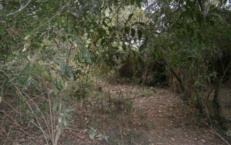 Foto de terreno habitacional en venta en domicilio conocido, 3 de mayo, xochitepec, morelos, 1020777 no 08